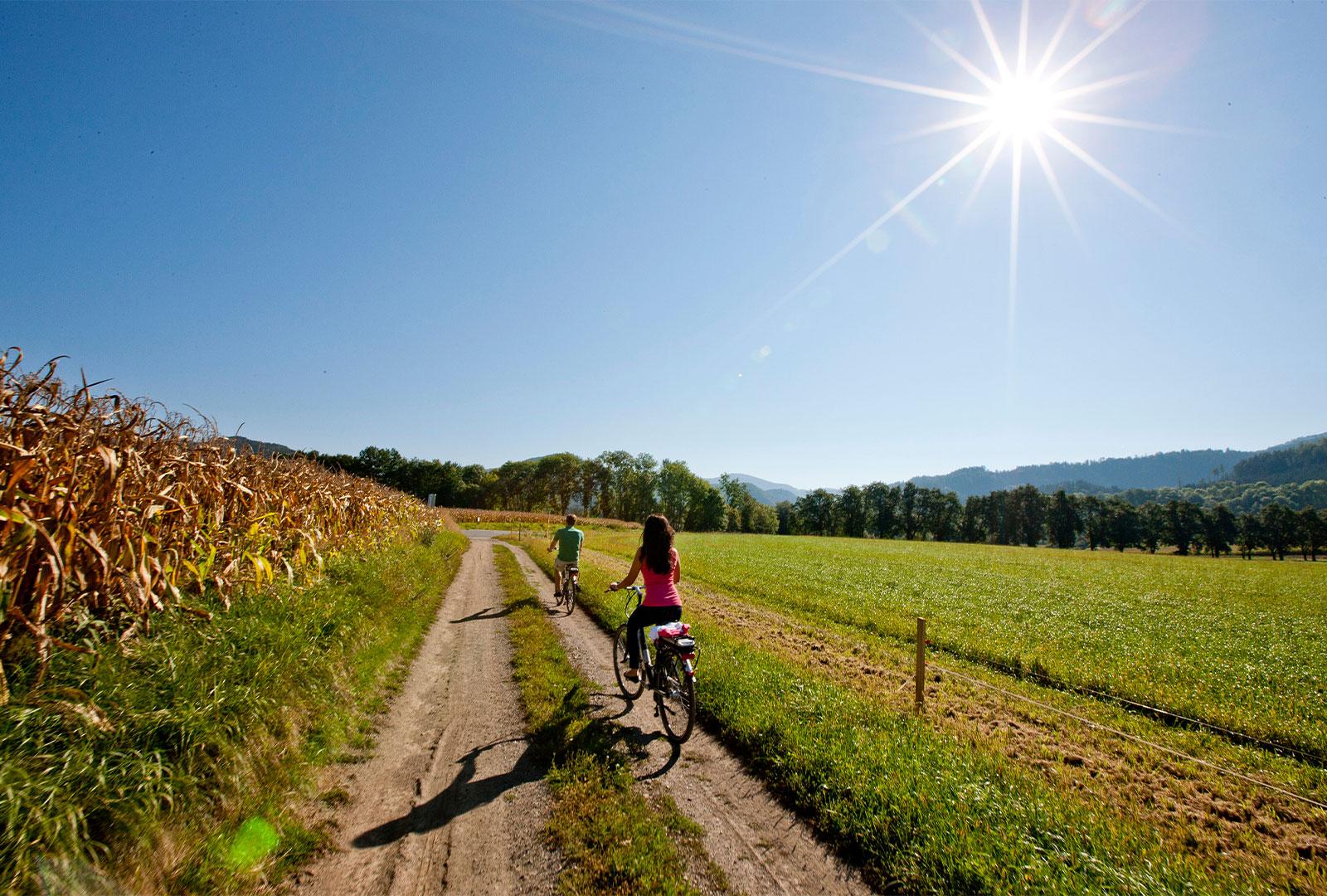 E-Bike System Mittelkärnten 4